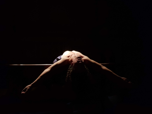 Roi du silence 12 (Emmanuel Besnault)